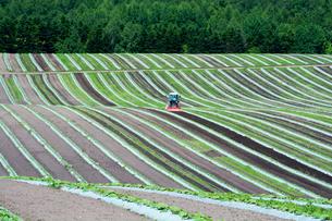 初夏の農作業の写真素材 [FYI00189685]