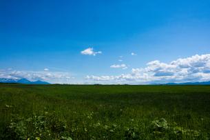 草原と夏の青空の写真素材 [FYI00189689]