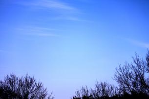 冬の空の写真素材 [FYI00189772]