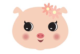 豚の女の子の写真素材 [FYI00189870]
