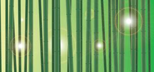 竹林の素材 [FYI00189958]