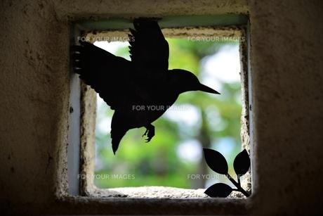 小鳥のシルエットの素材 [FYI00190606]