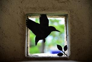 小鳥のシルエットの素材 [FYI00190609]