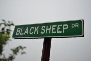 羊の標識の写真素材 [FYI00190639]