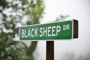 羊の標識の写真素材 [FYI00190664]