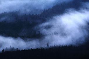朝霧の写真素材 [FYI00190795]