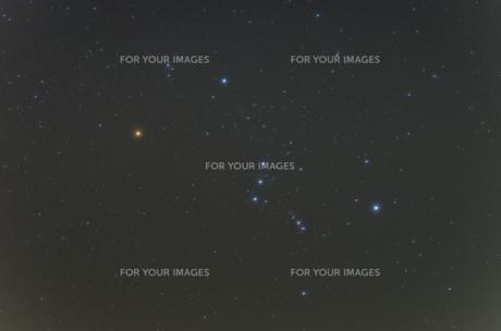 オリオン座の写真素材 [FYI00191428]