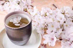 湯呑みと桜の写真素材 [FYI00191739]