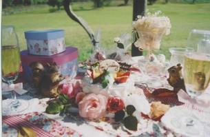 ガーデンパーティーのテーブルの写真素材 [FYI00191869]
