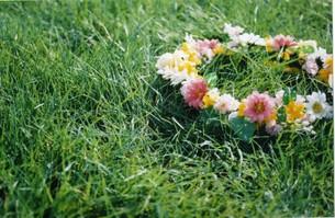 花冠の写真素材 [FYI00191870]