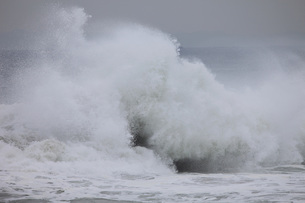 うねる波の写真素材 [FYI00192116]
