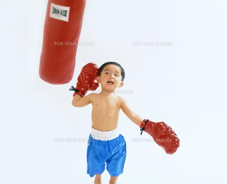 子供  ボクサー チャレンジの写真素材 [FYI00192760]