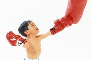 子供  ボクサー チャレンジの写真素材 [FYI00192761]