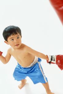 子供 ボクサーの写真素材 [FYI00192771]