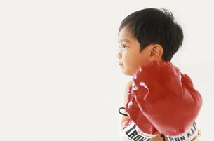 子供 ボクサーの写真素材 [FYI00192772]