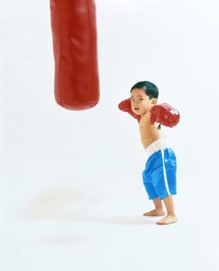 子供  ボクサー チャレンジの写真素材 [FYI00192778]