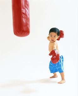 子供  ボクサー チャレンジの写真素材 [FYI00192783]