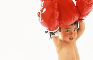 子供 ボクサーの写真素材 [FYI00192789]