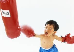 子供  ボクサー チャレンジの写真素材 [FYI00192790]