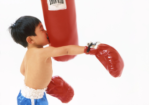 子供 ボクサー チャレンジの写真素材 [FYI00192792]
