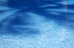 水面模様とヤシの木陰 タヒチの写真素材 [FYI00192847]