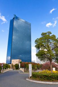 高層ビルと緑の写真素材 [FYI00192866]