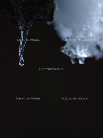 自然がつくり出した氷の芸術の写真素材 [FYI00192978]