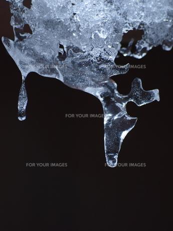 自然がつくり出した氷の芸術の写真素材 [FYI00192979]