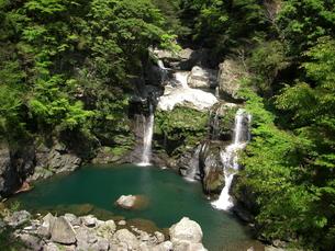 大轟の滝の写真素材 [FYI00193120]