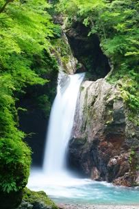 盛夏の滝の写真素材 [FYI00193178]