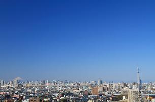 スカイツリーと富士山と東京の街並みの写真素材 [FYI00193386]