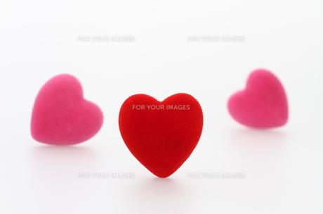 赤とピンクのハート 白バックの写真素材 [FYI00193438]