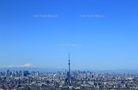 東京の都市風景 スカイツリーと富士山と青空の写真素材 [FYI00193484]