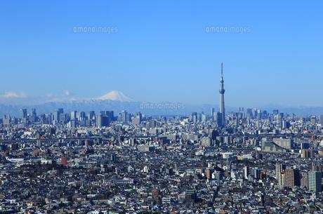 東京の都市風景 富士山とスカイツリーの写真素材 [FYI00193485]