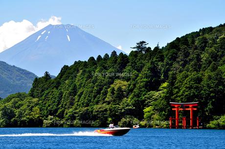 芦ノ湖の夏の風景の素材 [FYI00193532]