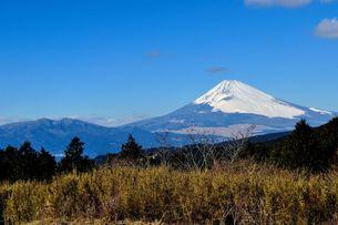富士山〜十国峠より〜の素材 [FYI00193561]