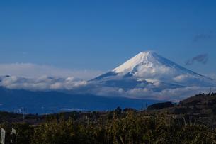 富士山(丹那からの眺め)の素材 [FYI00193604]