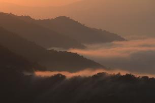 枝折峠からの雲海の写真素材 [FYI00193605]