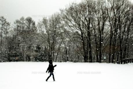 雪景色に浮かぶ少女Ⅱの素材 [FYI00193693]