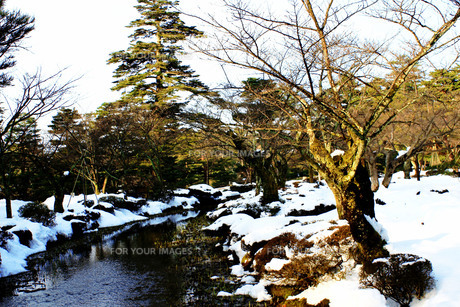日本庭園Ⅱの写真素材 [FYI00193699]