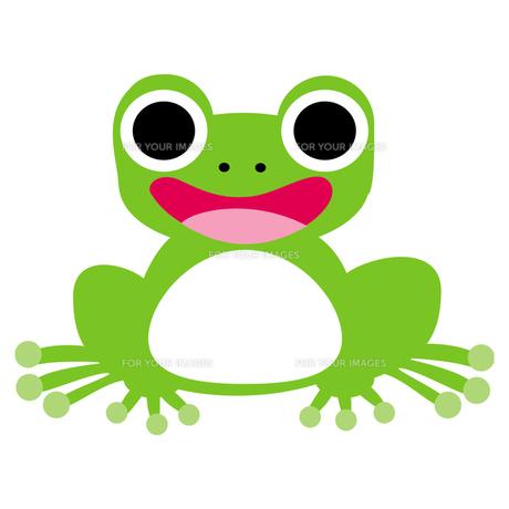 カエルの写真素材 [FYI00193967]