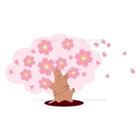 桜の木の写真素材 [FYI00193973]