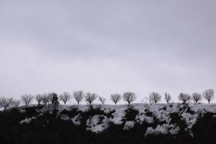 冬の空の写真素材 [FYI00194315]