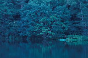 水辺の静寂な時間の素材 [FYI00194331]