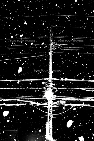 Telegraph pole of the snowstormの素材 [FYI00194347]