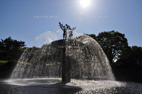 太陽と噴水の写真素材 [FYI00194423]