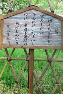 宮本武蔵、最初の決闘場の写真素材 [FYI00194575]