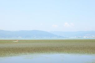 諏訪湖の写真素材 [FYI00195040]
