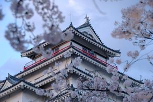 会津若松城と桜 の素材 [FYI00195180]