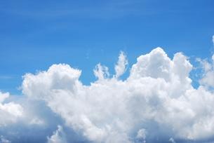 青空の写真素材 [FYI00195208]